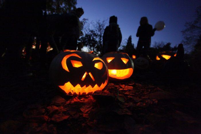Halloween v botanické zahradě (8)