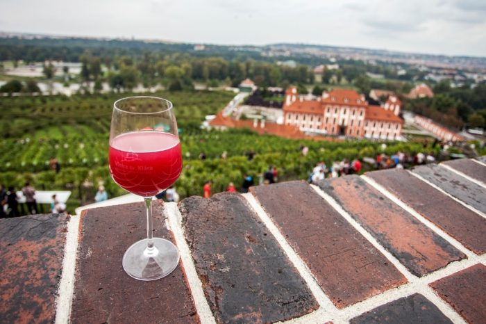 Vinobraní sv. KláryM1