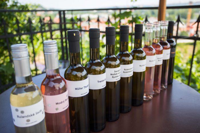 Vína z vinice sv Kláry 2017 (5)