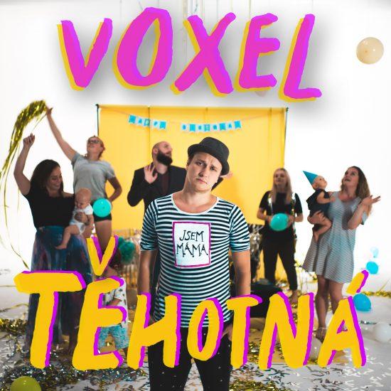 Voxel - Tehotna