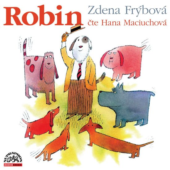 cover_audiokniha_CD_Robin