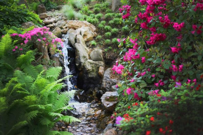 Japonská zahrada1