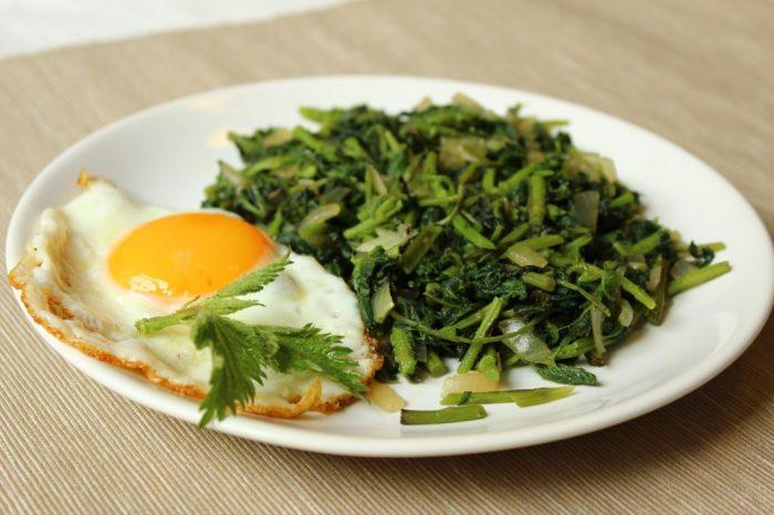 Salát z kopřiv s vejcem1_NATURHOUSE (4)
